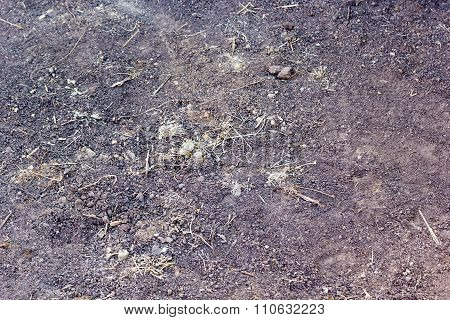 Background Of Earth With Lumps Of Clay And Dried Grass