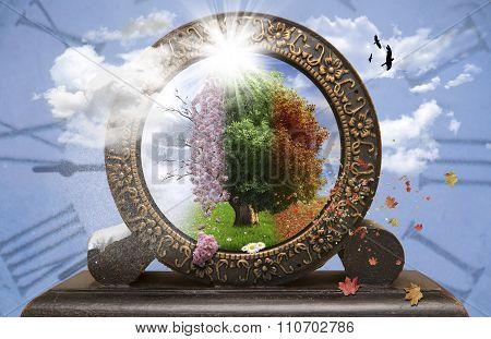 Four season tree in a clock
