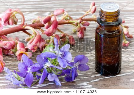 Bach Flower Remedies Of Red Chestnut And Violets