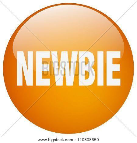 Newbie Orange Round Gel Isolated Push Button
