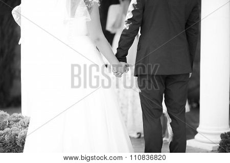 Black White Photo Hands Of Bride And Groom During The Oath