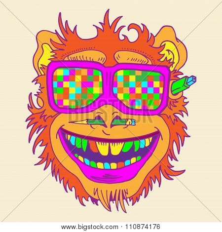 A funny monkey face colored glasses.