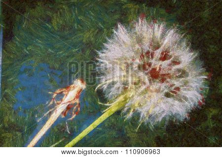 Dandelions virtual painting