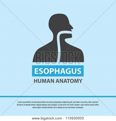 Esophagus symbol, medical icon. Vector EPS10
