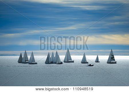 Many Yachts In Bay