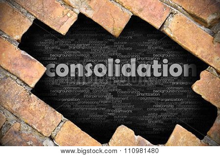 Hole In The Brick Wall With Word Consolidation
