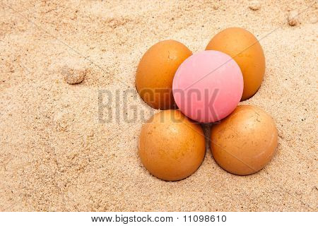 Egges In Sand