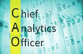 Business acronym term CAO - Chief analytics officer poster