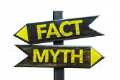 Fact - Myth signpost isolated on white background poster