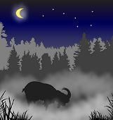 The goat costs in a fog against wood a moonlight night poster