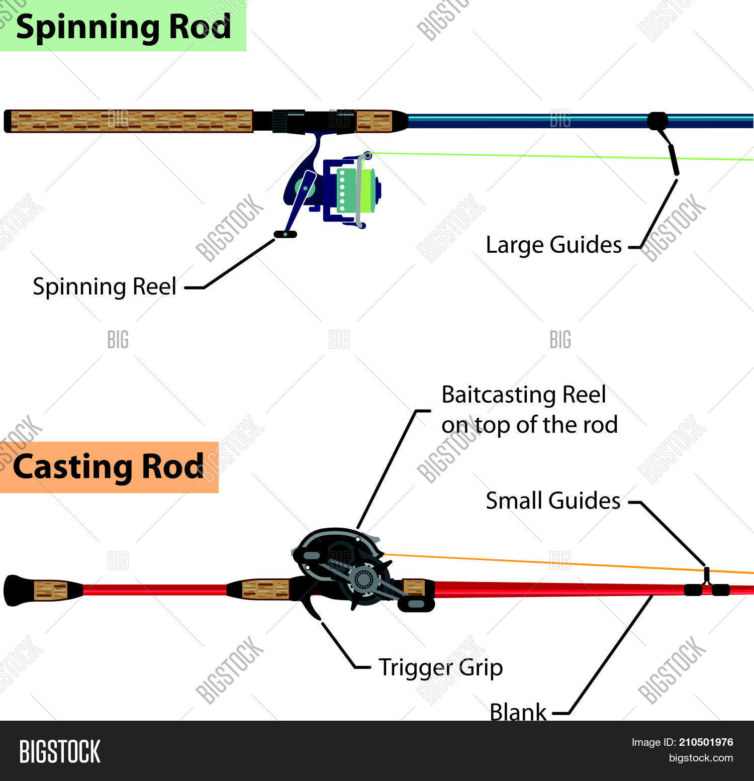 diagram vector spinning fishing pole and casting pole