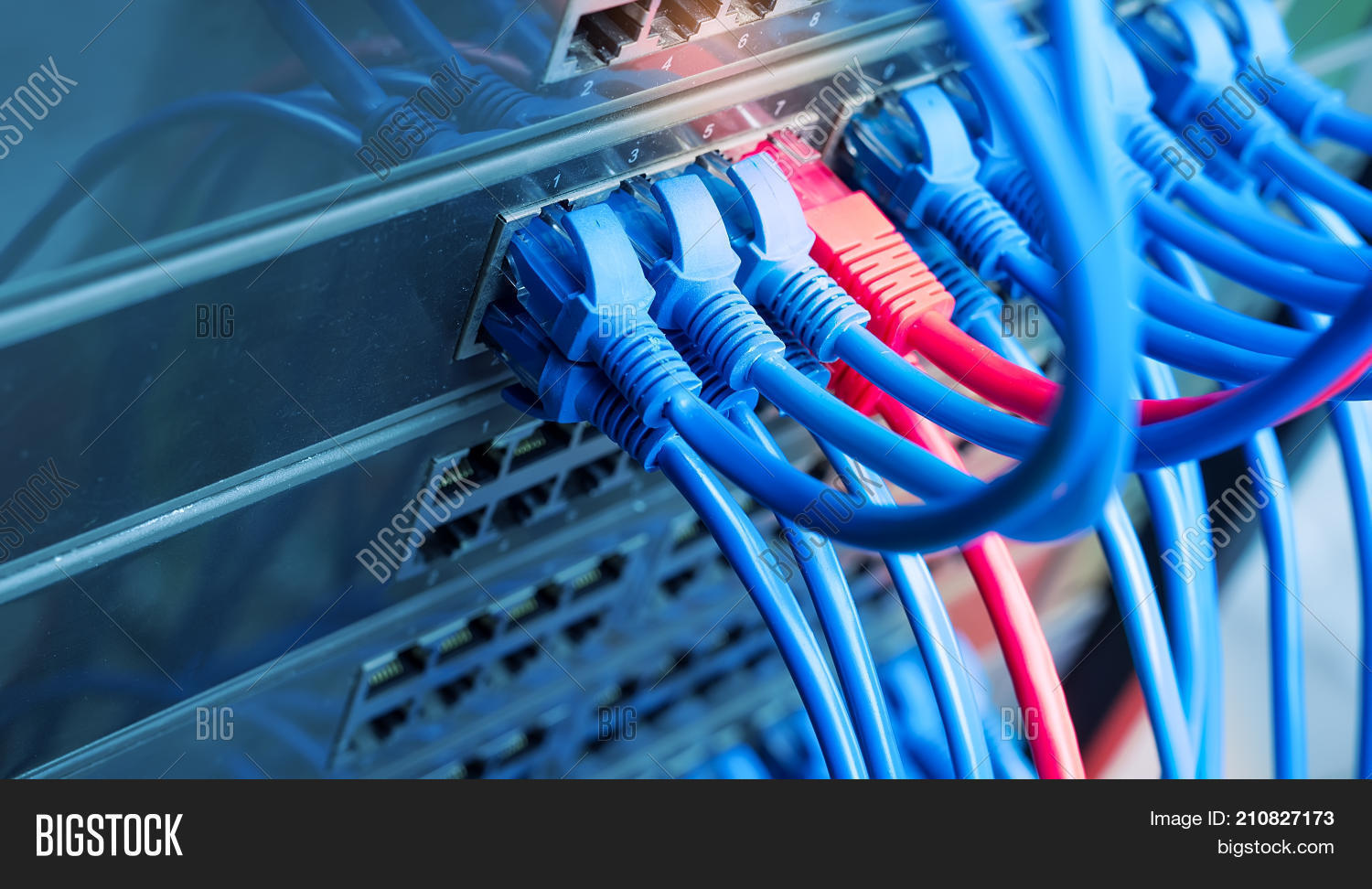 Network Switch Image & Photo (Free Trial) | Bigstock