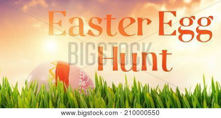 Grass growing outdoors against painted easter eggs on white background