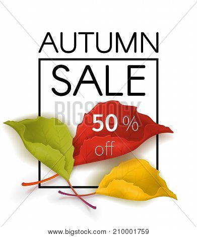 Autumn sale poster with a bouquet of yellow, red, green leaves indicating the percentage discount. Vector design for leaflets store or autumn sale web banner background
