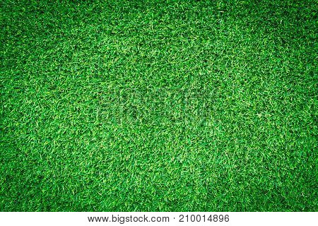 Artificial green grass texture or green grass background for golf course. soccer field or sports background concept design.