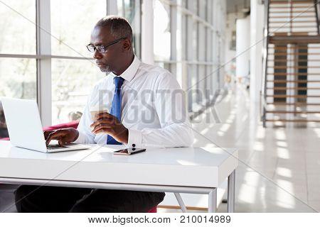 Portrait of a businessman using laptop at a desk
