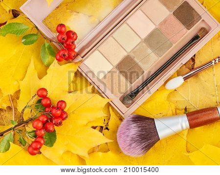 Autumn Palette makeup on yellow leaves, fall colors