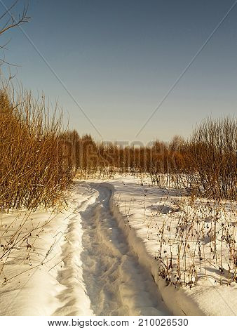 Winter landscape in rural terrain on background blue sky