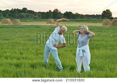 happy senior couple doing exercises in autumnal park