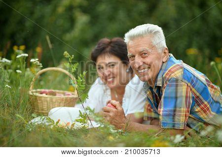Happy senior couple having picnic  in  park