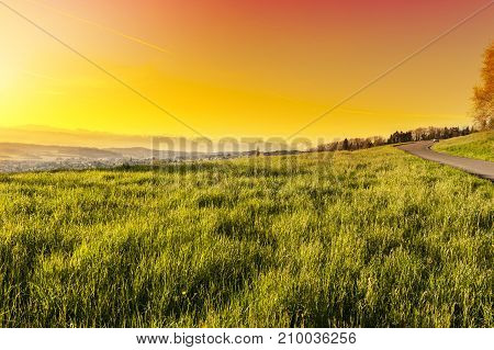 Pasture on the background of snow-capped Alps in Switzerland at sunset. Swiss small town at the foot of mountains surrounded by meadows.