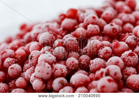 Detail Of A Pile Of Frozen Redcurrants.