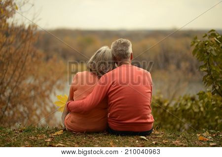 rear view of senior couple sitting on grass and hugging