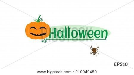 Halloween day concept, Halloween pumpkin smile and friendly spider. Vector EPS10 illustration design.