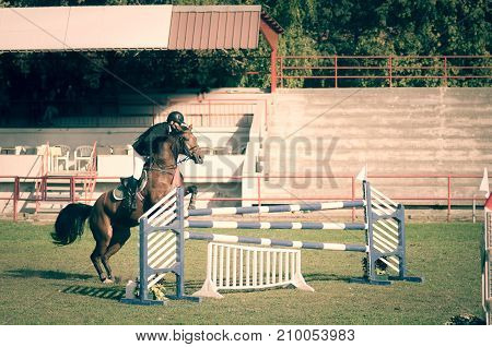Young man jockey ride beautiful brown horse and jump over the crotch in equestrian sport