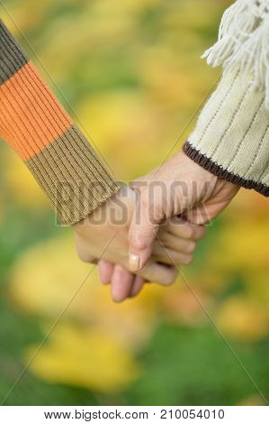 Two hands together in autumn park close up