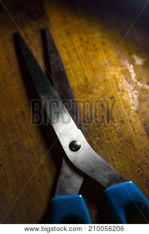 blue kitchen scissors on a yellow wooden board in the kitchen in a dark light in a low key