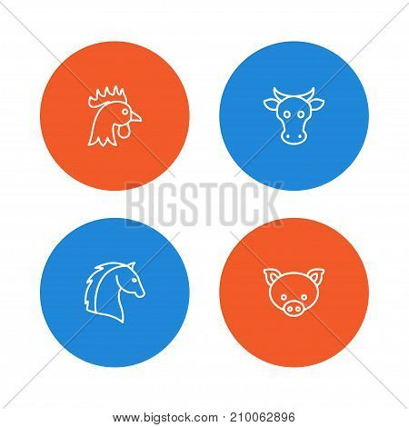 Collection Of Horse, Cock, Pig And Other Elements.  Set Of 4 Alive Outline Icons Set.