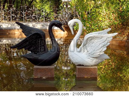 Almaty Kazakhstan - September 8 2017: Sculpture of a white and black swan in the city park of Almaty