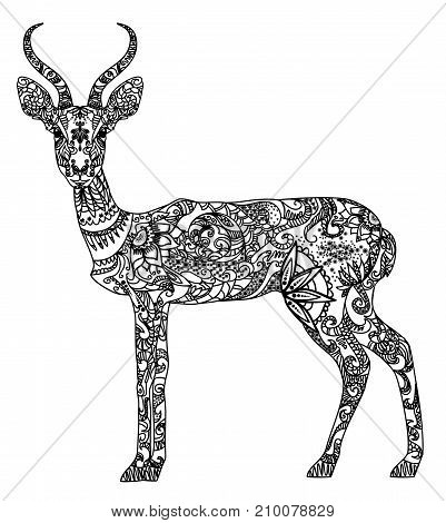 Vector illustration of a beautiful patterned antelope