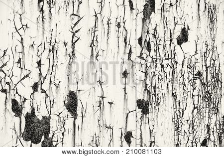 Detail of rusty metal background. Industrial theme. Black and white photo.