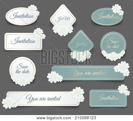 Realistic Vector label shape with golden frame and white daisy flower for you wedding invitation or greeting card design illustration. Realistic paper sticker or web banner template with shadow.