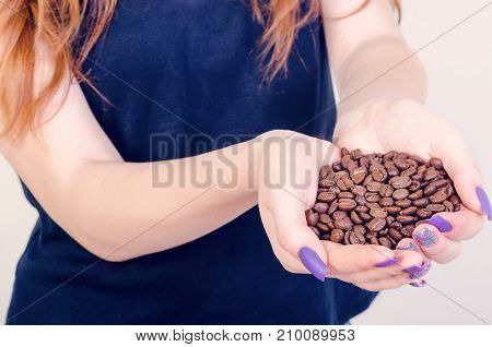 grains of coffee are in woman hands