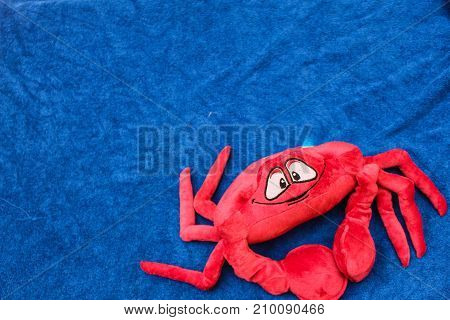 crab toy on blue background backdrop or background