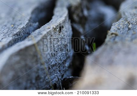 Nature Abstract: Deep Fissure in Aged Weathered Wood