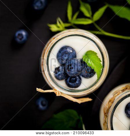 Healthy Greek Yogurt with Blueberries and Granola Parfait. Selective focus.