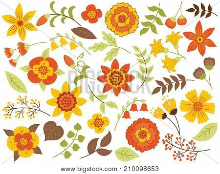 Vector autumn floral set with yellow flowers, red berries, green and brown leaves. Vector floral elements for wedding, bridal shower, birthday and thanksgiving. Vector autumn floral set vector illustration