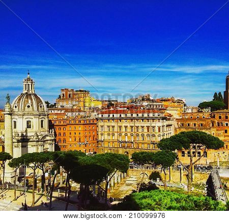 View of Rome from Roman Forum in Italy. Beautiful pine trees over the roofs of the ancient City of Rome in Italy.