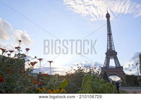 Eiffel Tower Between Colored Flowers In Paris, France