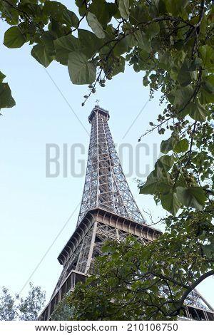 Metal Eiffel Tower Between Green Leaves, Paris