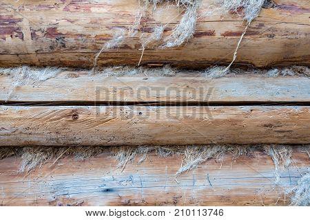 Wooden Planks. Texture
