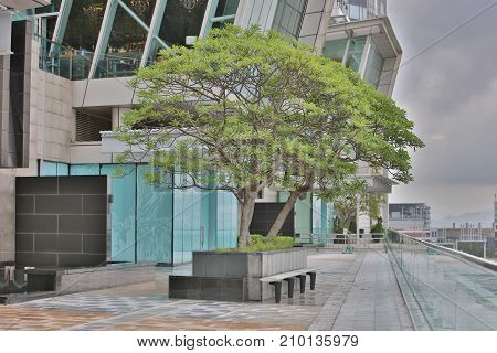The Public Area At The Ifc With Walkway