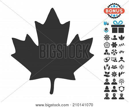 Maple Leaf icon with free bonus symbols. Vector illustration style is flat iconic symbols.