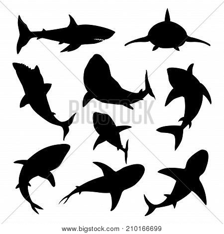 Vector illustration toothy black silhouette swimming angry shark. Animal sea fish character underwater cute marine wildlife mascot. Scary smile cool evil monster shark character funny predator.