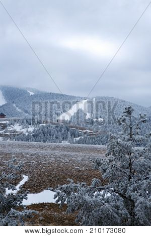 Beautiful view on white snowy winter in foggy mountains background