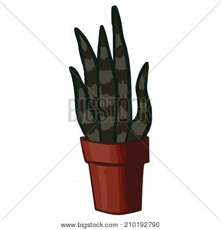 flat house plant pot illustration. Colorful house plant in pot for your design.